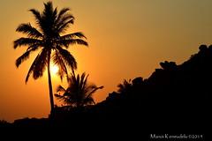Enjoy every sunset look forward to every sunrise..