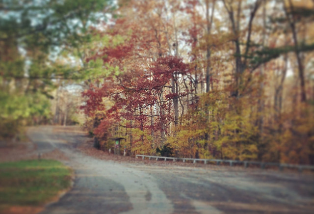 Autumn Magic Along Military Ridge Trail >> Top 12 Scenic Roads Of Virginia State Parks State Parks Blogs