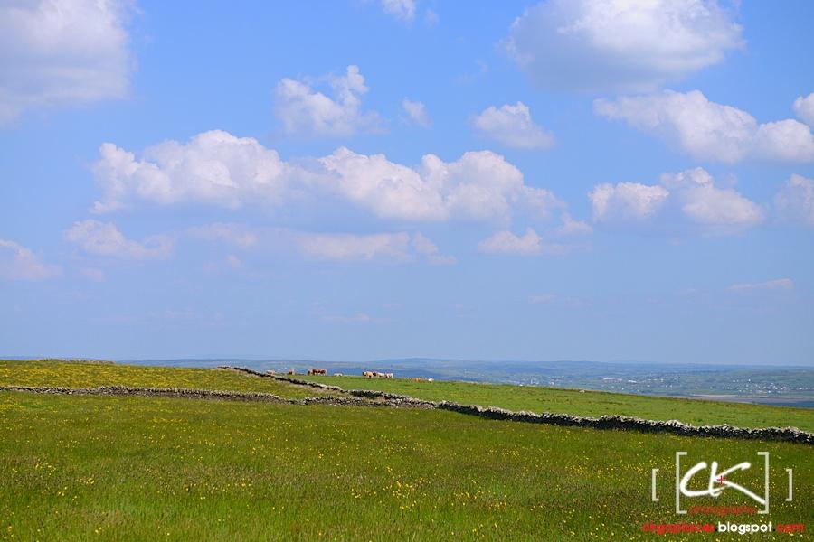 Ireland_045