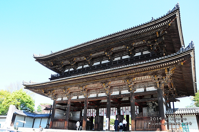 2014仁和寺櫻花12.JPG