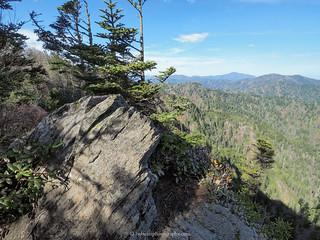 Eagle Rocks