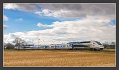 Weltrekord TGV bei Malsch, 11. März 2009