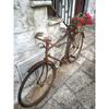 Street bike with flowers :herb::tulip: