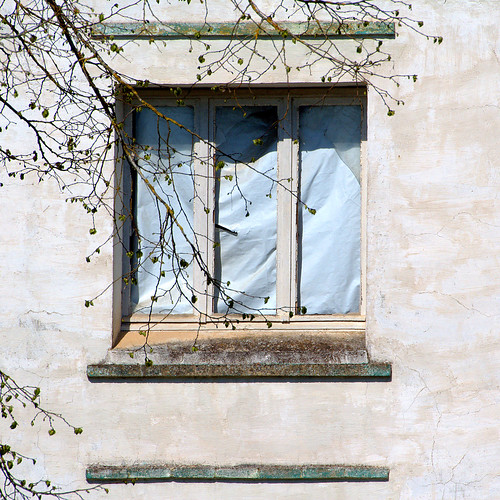 house tree window wall square blind branches ruin olympus luxembourg derelict omd em1 junglinster fourcotts
