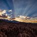 Alabama hills last sun rays-1 by mdb90313