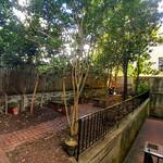 Shared backyard
