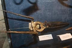 Ancienne cisaille à épineux