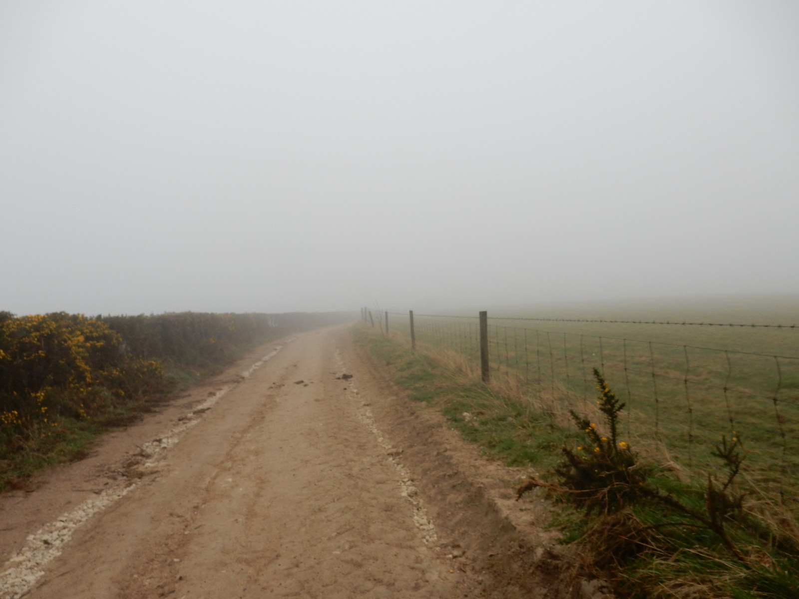 """View"" along South downs way ""Why am I here"" moment. Poor visibility and strong winds. Hassocks to Lewes"