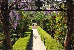 Garden of l'Albarda