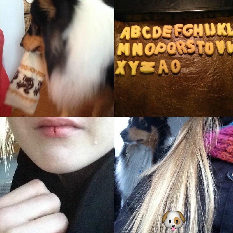 PicMonkey Collage-8