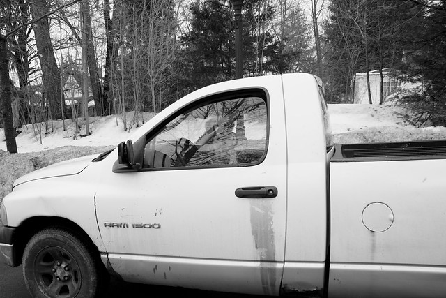 IMG_3800 Dog in Truck
