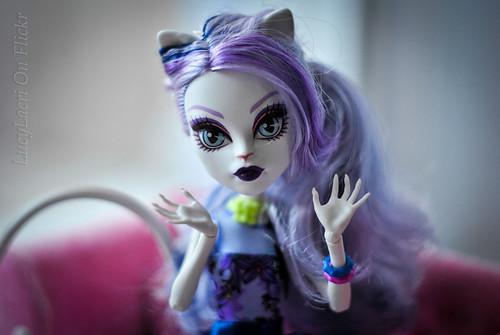 vanilla cat Catrine (18)