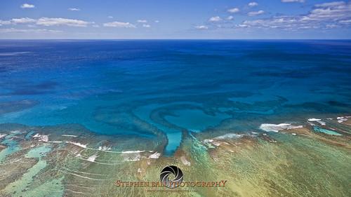 Paiko's Reef