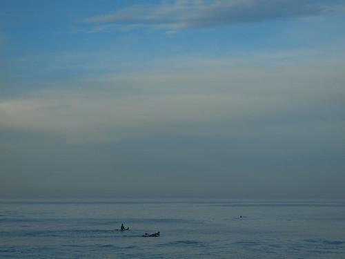 DSCN2190 - Shark sighting at Seascape Beach in Aptos, 7:16am, 15 March 2015