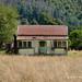 Abandoned Farmhouse, Murchison, NZ by flyingkiwigirl