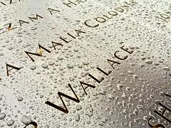 11/9 Memorial NY
