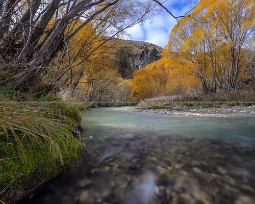 autumn trees newzealand water river stream fallcolors foliage riverbed nz otago aotearoa dri highdynamicrange hdri riverbend lindispass lindis digitalblending vertorama manualblending dynamicrangeincrement aotearoatour
