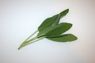 04 - Zutat Salbei / Ingredient sage