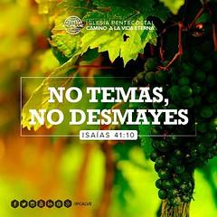 Isaías 41:10 Así que no temas, porque yo estoy contigo; no te angusties, porque yo soy tu Dios. #versiculodeldia #ipcalve
