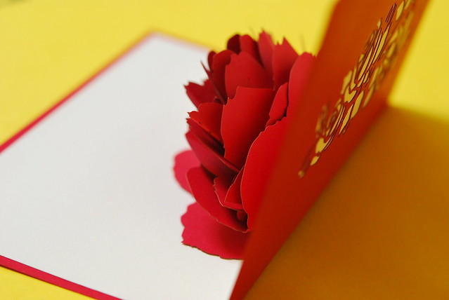 flowery card, Nikon D60, AF-S Micro Nikkor 60mm f/2.8G ED