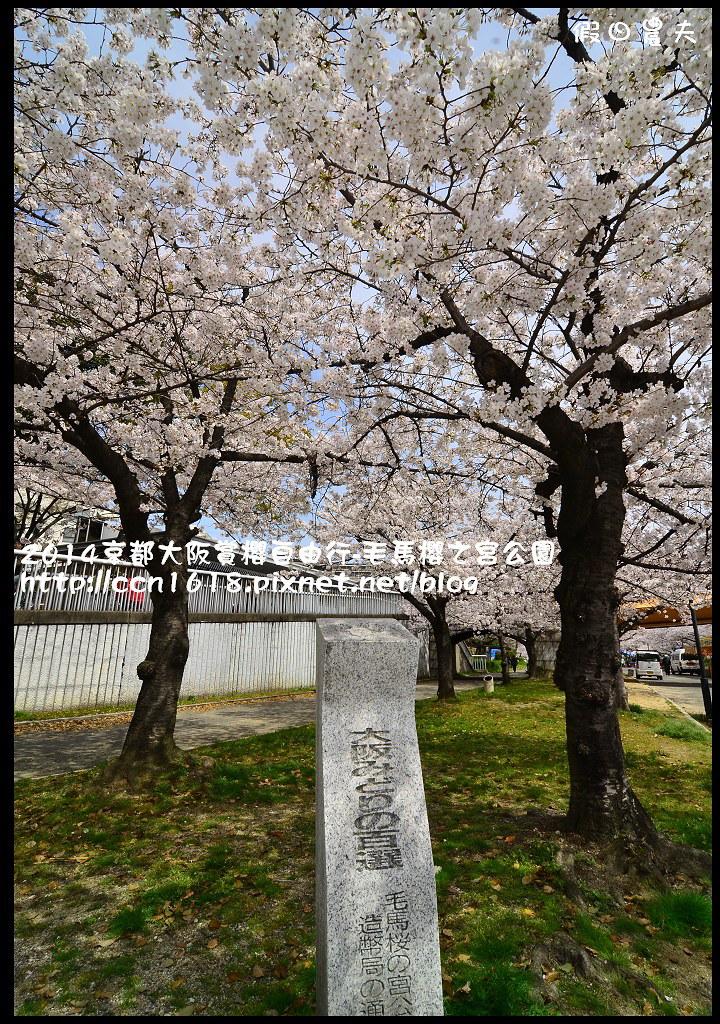 2014京都大阪賞櫻自由行-毛馬櫻之宮公園DSC_1938