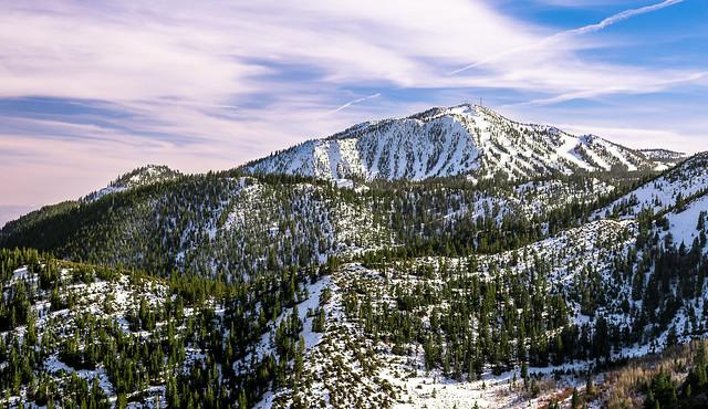Rose Ski Tahoe
