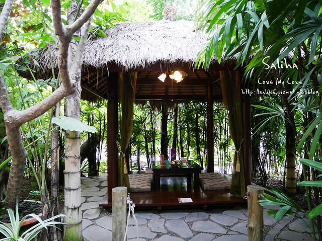 高雄ㄧ日遊景點餐廳動物園淨園 (1)