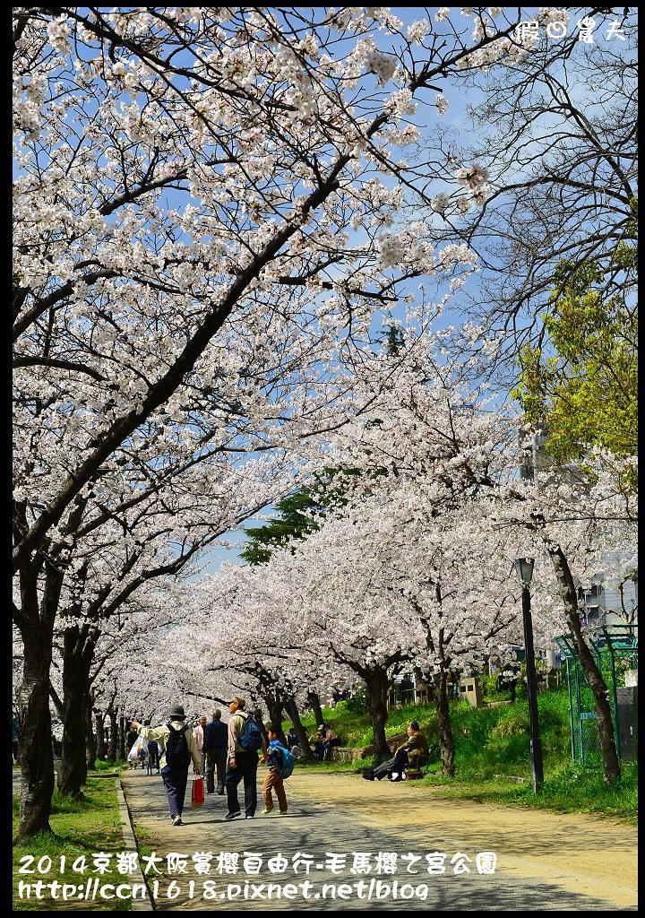 2014京都大阪賞櫻自由行-毛馬櫻之宮公園DSC_1987