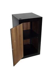 Black Laminate Cabinet with Wood Veneer interior