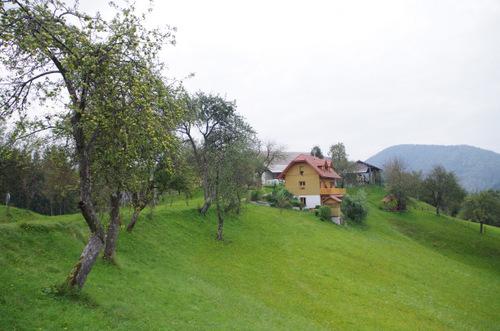 Apartments - Agritourism