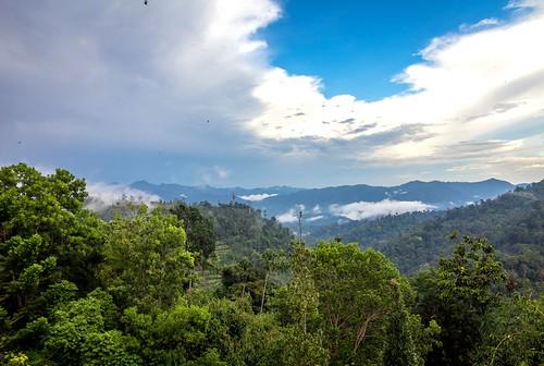 canonphotography efs1585mmf3556isusm rainforest landscapes berjayahillsresort eos60d clouds hills nature scenicsnotjustlandscapes creativecommons ccbyncnd
