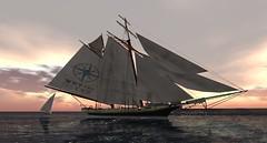 LCC Cruise 100515
