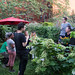 Small photo of Marina Zurkow's Garden