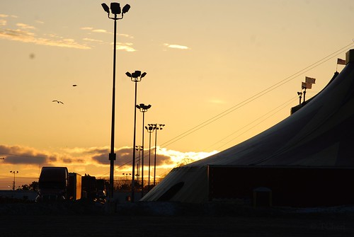 morning usa cold sunrise outdoors march tanya michigan hazelpark shrinecircus tcheriphotography tcheri tcheriphoto