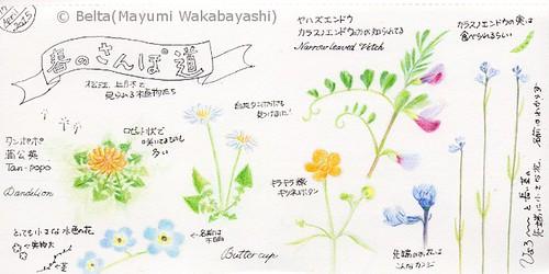 2015_04_18_spring_01_s