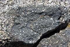 Xenolith in granodiorite (Giant Forest Granodiorite, mid-Cretaceous, 97-102 Ma; Moro Rock, Sequoia National Park, California, USA) 4