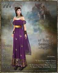 Maiden of Tuatha Gown Set-Purple_Promo Art