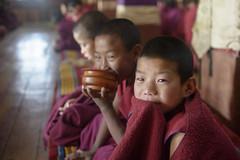 Little Monk In Tawang.