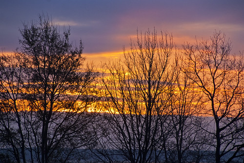 sunset sun tree silhouette set sunrise rise