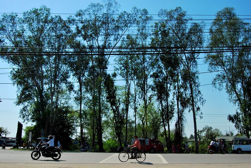 Bharatpur crosswalk