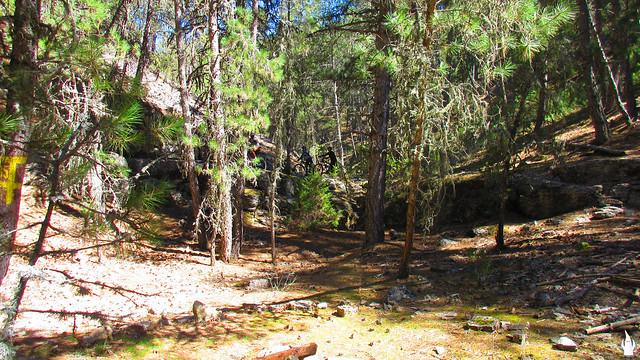 2015_04_04_Cañón del Río Lobos_073