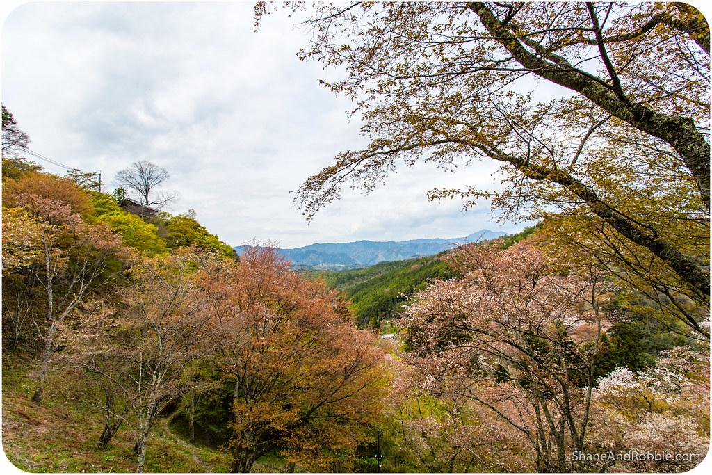 2015-04-12-20150412(Canon EOS 6D)-00041