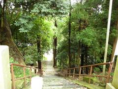 Swirlix in Motomiya, Fukushima 29 (Adatara shrine)