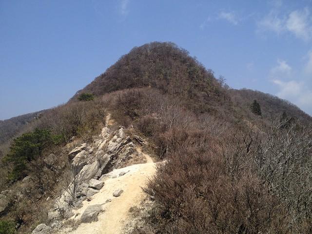 釈迦ヶ岳 松尾尾根 登山道