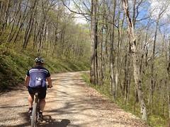 Climbing Cooper Gap Road