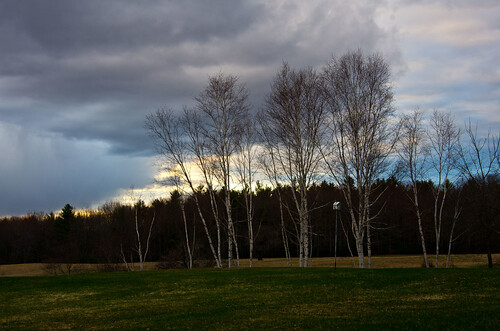 trees sunset clouds spring maine wells thefarm