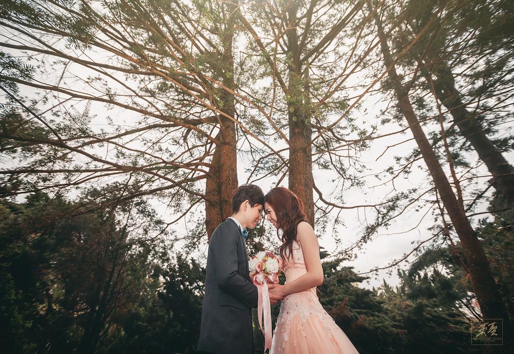 婚攝英聖-婚禮記錄-婚紗攝影-27926582910 9ff0ce2693 b