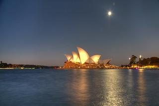 The Aussie Layover
