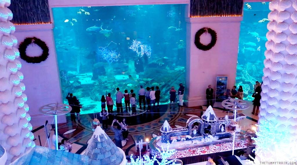 16564583249 959c2d6b4e b - {Dubai 2014} 24 hours at Atlantis The Palm
