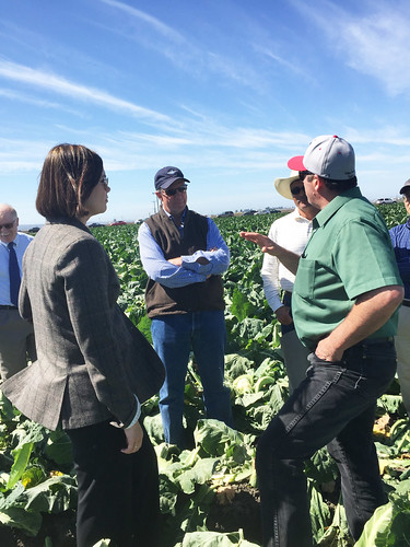 Deputy Under Secretary Alexis Taylor speaks with Mike Antle and his growers about exporting fresh produce.